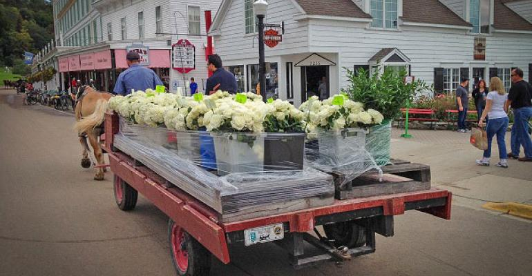 horsedrawn carriage brings in floral