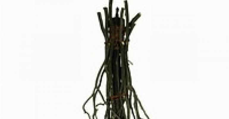 Meyda Lighting Creates Twig Custom Chandelier