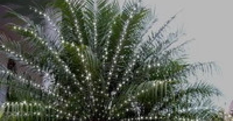Trim-it-Quick Makes for Easy Installation of Twinkle Lights