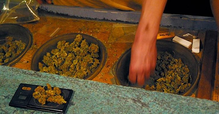 cannabis bar