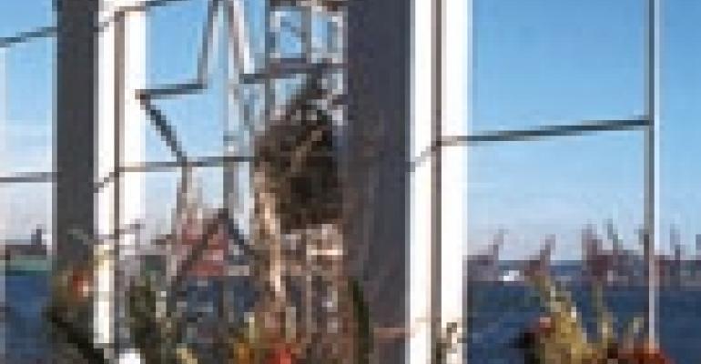 Confetti: Puget Sound Spectacular