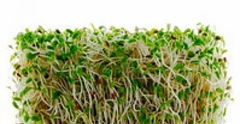 Avoid Raw Alfalfa Sprouts, FDA Says