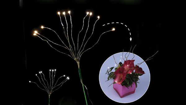 Fortune Product Bouquet Lights